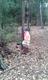 Galeria Muchomorki w lesie
