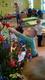 Galeria Biedronki ubierają choinkę
