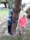 drzewa (5).jpeg