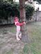 drzewa (6).jpeg
