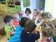 Galeria zabawa w tworzenie kolorowego lodu u Stokrotek