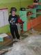Galeria Biedronki na Antarktydzie