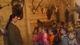 Galeria Motylki w Centrum Edukacji Przyrodniczej
