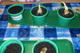 Galeria Hodowla roślin w Jagódkach
